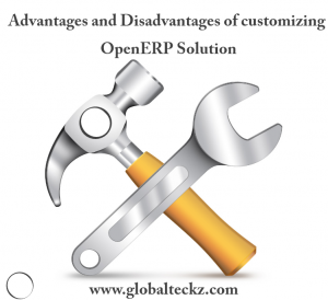 Advantages and disadvantages of customizing OpenERP solutions