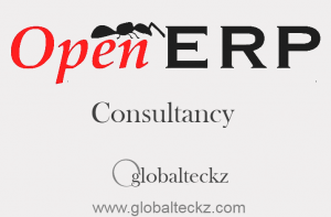 OpenERP consultancy services