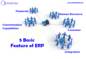 5 basic feature of ERP
